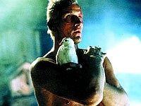 Хауер запропонував режисера для сиквела «Того, що біжить по лезу бритви»