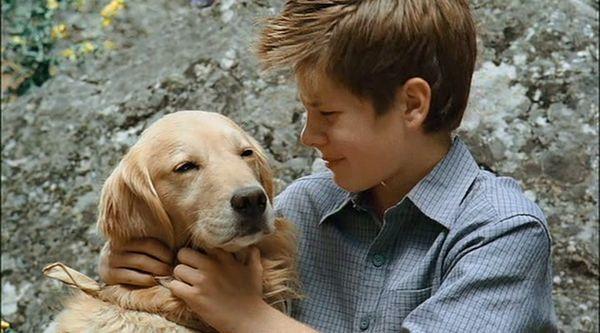 Фільм «Діамантовий пес | Dog Gone» онлайн