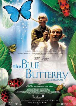 Блакитний метелик
