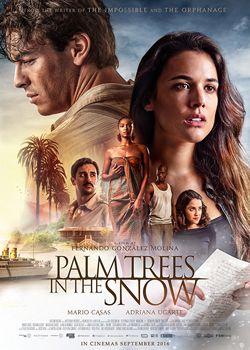 Пальми в снігу